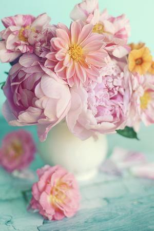 Peonies On Teal