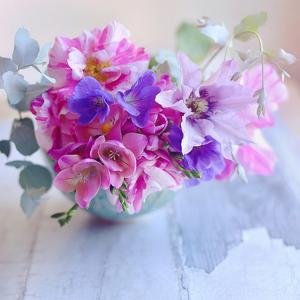 Violet Blooms by Sarah Gardner