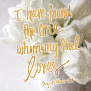 Whom my Soul Loves by Sarah Gardner