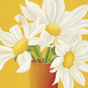 Sunny Daisies by Sarah Horsfall