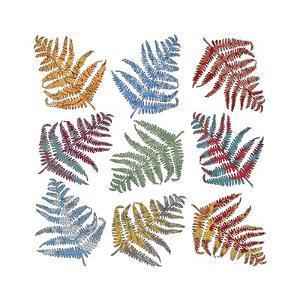 Ferns, 2012 by Sarah Hough