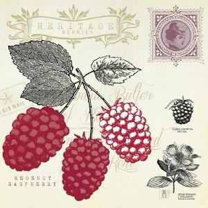 Raspberry Notes by Sarah Mousseau