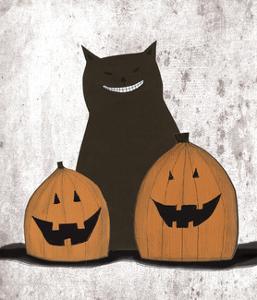 Cat and Pumpkins by Sarah Ogren