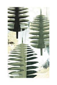 Palms by Sarah Ogren