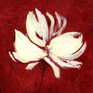 Cream on Crimson by Sarah Parker