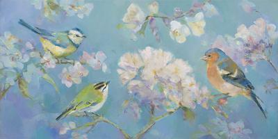 Birds in Blossom