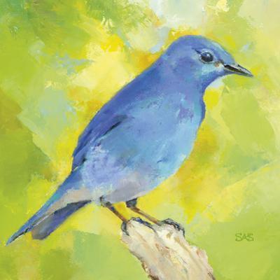 Mountain Bird by Sarah Simpson