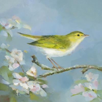 Woodland Birds III