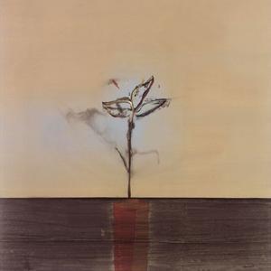 Zen Blossom II by Sarah Stockstill