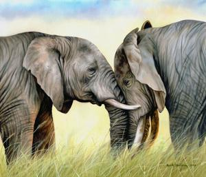 African Elephants by Sarah Stribbling