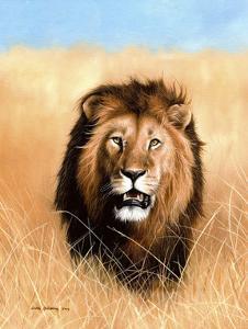 African Savannah Lion by Sarah Stribbling