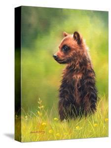 Brown Bear Cub by Sarah Stribbling