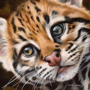 Ocelot Kitten by Sarah Stribbling