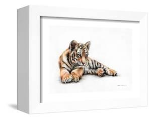 Tiger Cub Colour Pencil Drawing by Sarah Stribbling