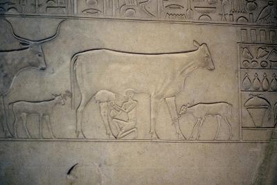 Sarcophagus, Middle Kingdom, Ancient Egyptian, C2040-1786 Bc--Photographic Print