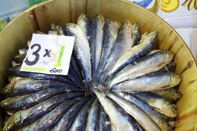 Sardines in Mercado Central (Central Market), Valencia, Spain, Europe-Neil Farrin-Photographic Print