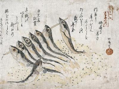 Sardines-Teisai Hokuba-Giclee Print
