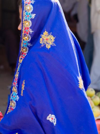 Sari Woman, New Delhi, India-Bill Bachmann-Photographic Print
