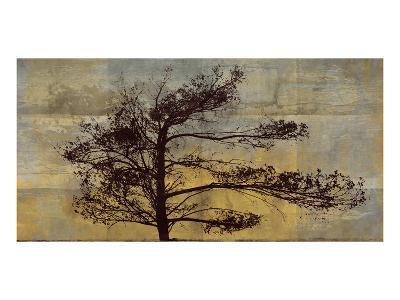 Satori IV--Art Print