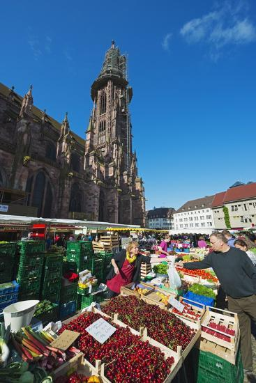 Saturday Market, Freiburg Cathedral, Freiburg, Baden-Wurttemberg, Germany, Europe-Christian Kober-Photographic Print