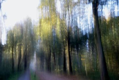 https://imgc.artprintimages.com/img/print/saturday-sun_u-l-q1gvizl0.jpg?p=0
