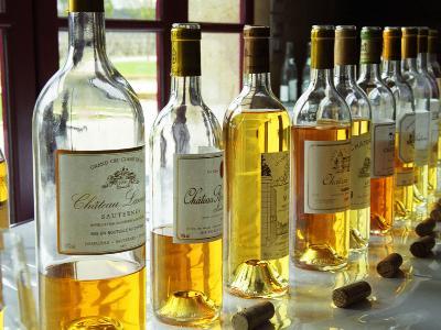 Sauternes Wines at Union Des Grand Crus Tasting, Domaine De Chevalier in Graves, Bordeaux, France-Per Karlsson-Photographic Print
