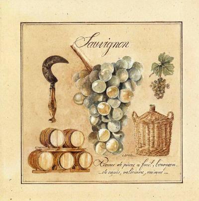 Sauvignon-Laurence David-Art Print
