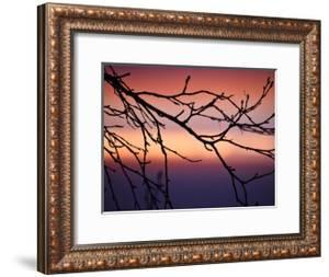 Abstract Sunset by Savanah Plank