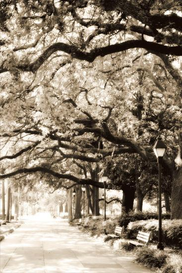 Savannah Sidewalk Sepia I-Alan Hausenflock-Photographic Print