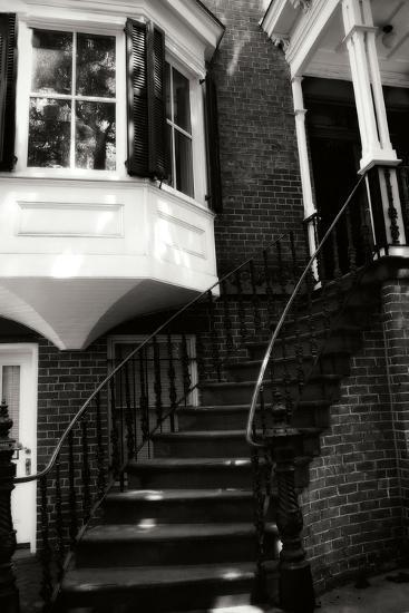 Savannah Style III-Alan Hausenflock-Photographic Print