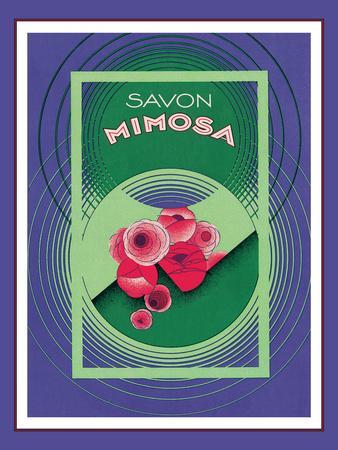 https://imgc.artprintimages.com/img/print/savon-mimosa_u-l-f4eqdp0.jpg?p=0