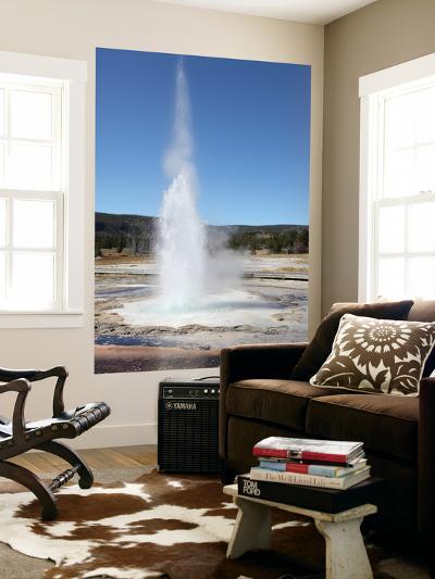 Sawmill Geyser, Upper Geyser Basin Geothermal Area, Yellowstone National Park, Wyoming-Stocktrek Images-Wall Mural