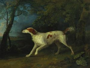 A Brown and White Setter in a Wooded Landscape, 1773 by Sawrey Gilpin