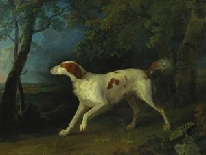 A Brown and White Setter in a Wooded Landscape by Sawrey Gilpin