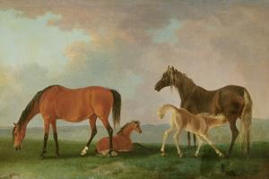 Mares and Foals by Sawrey Gilpin