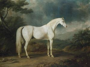 White Horse in a Wooded Landscape, 1791 by Sawrey Gilpin