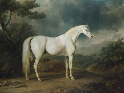 White Horse in a Wooded Landscape, 1791
