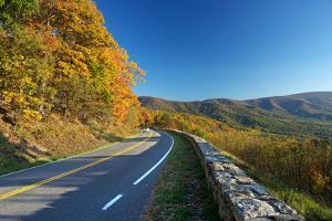 Road in Shenandoah National Park by sborisov