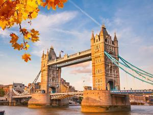 Tower Bridge with Autumn Leaves, London by sborisov