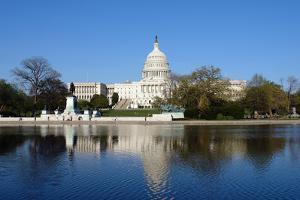 US Capitol and Capitol Hill Washington DC by sborisov