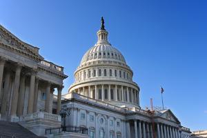 US Capitol, Washington DC by sborisov