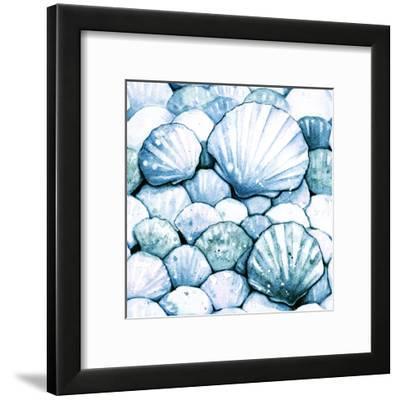 Scallop Shells Aqua-Sam Nagel-Framed Art Print