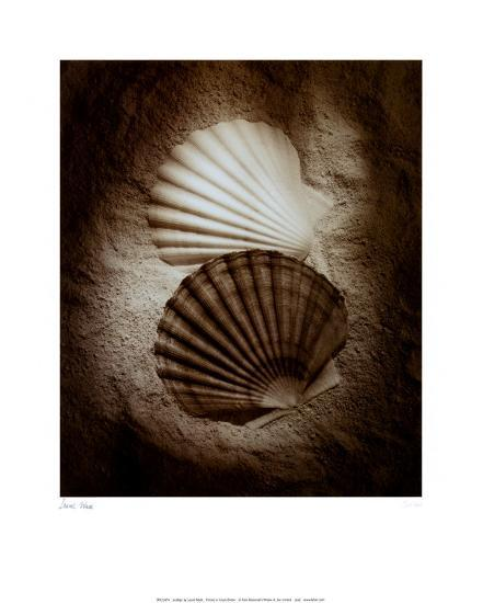 Scallops-Laurel Wade-Art Print