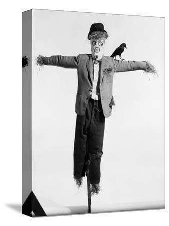 Scarecrow with Crow on His Shoulder