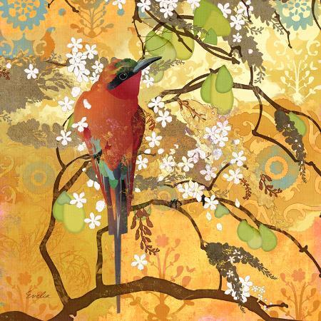 scarlet-bee-eater