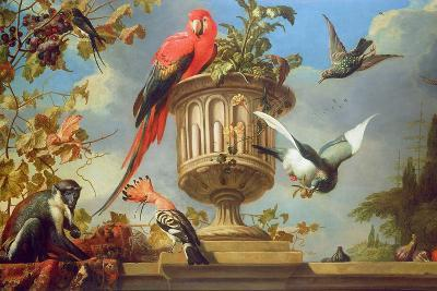Scarlet Macaw Perched on an Urn, with Other Birds and a Monkey Eating Grapes-Melchior de Hondecoeter-Giclee Print