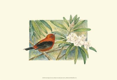 Scarlet Tanager-Janet Mandel-Art Print