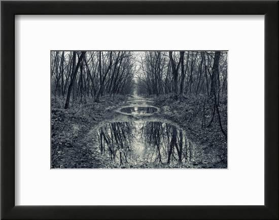 winter woodland home decor the collection.htm scary road in winter woodland  black and white scenery  scary road in winter woodland  black
