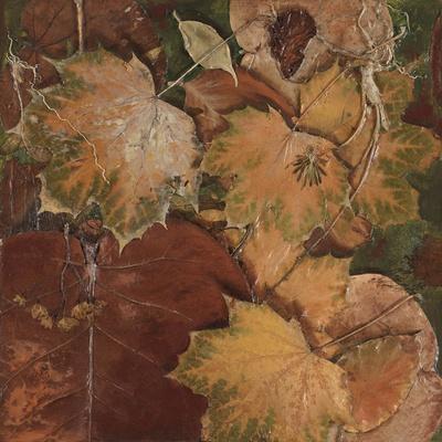https://imgc.artprintimages.com/img/print/scattered-leaves-ii_u-l-pxk6gu0.jpg?p=0