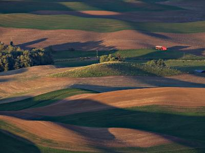 Scene at Dawn from Steptoe Butte, Palouse, Washington, USA-Charles Sleicher-Photographic Print